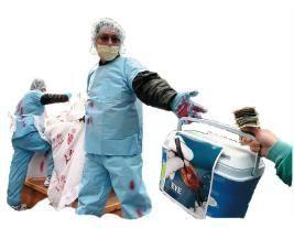 извлечение органов, Фалуньгун,