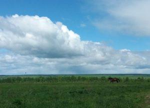 природа, погода, облако,