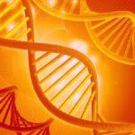 Генетически модифицированные дети в Китае — уже реальность