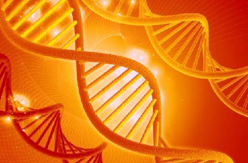 генетика, ДНК,