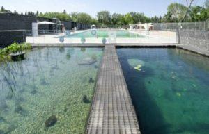 плавательный бассейн,