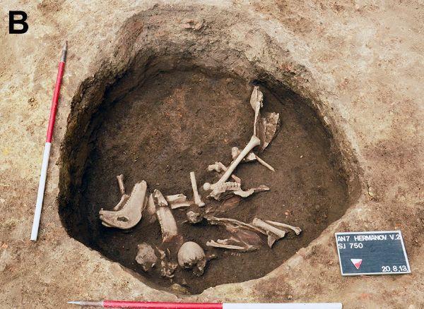 раскопки, археология,