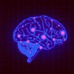 Какие продукты положительно влияют на здоровье мозга
