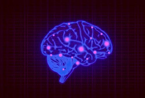 тайна мозга, мозг человека, мозговые функции,