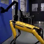 Необычный робот начал следить за социальной дистанцией между людьми