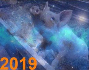 2019, Новый год,